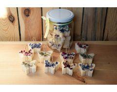 Citronzāles rapšu vaska Smaržtaureņi ar augiem