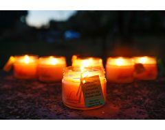 Dabīga pretodu svece